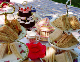 Hen Party Picnic